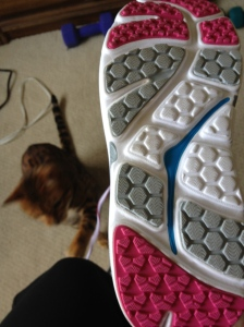 nubby soles and long laces for kitty to attack!