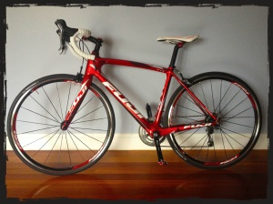 shiney bright red fuji ~ it was love at first sight!